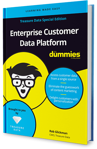 Introducing the Enterprise Customer Data Platform for Dummies Guide